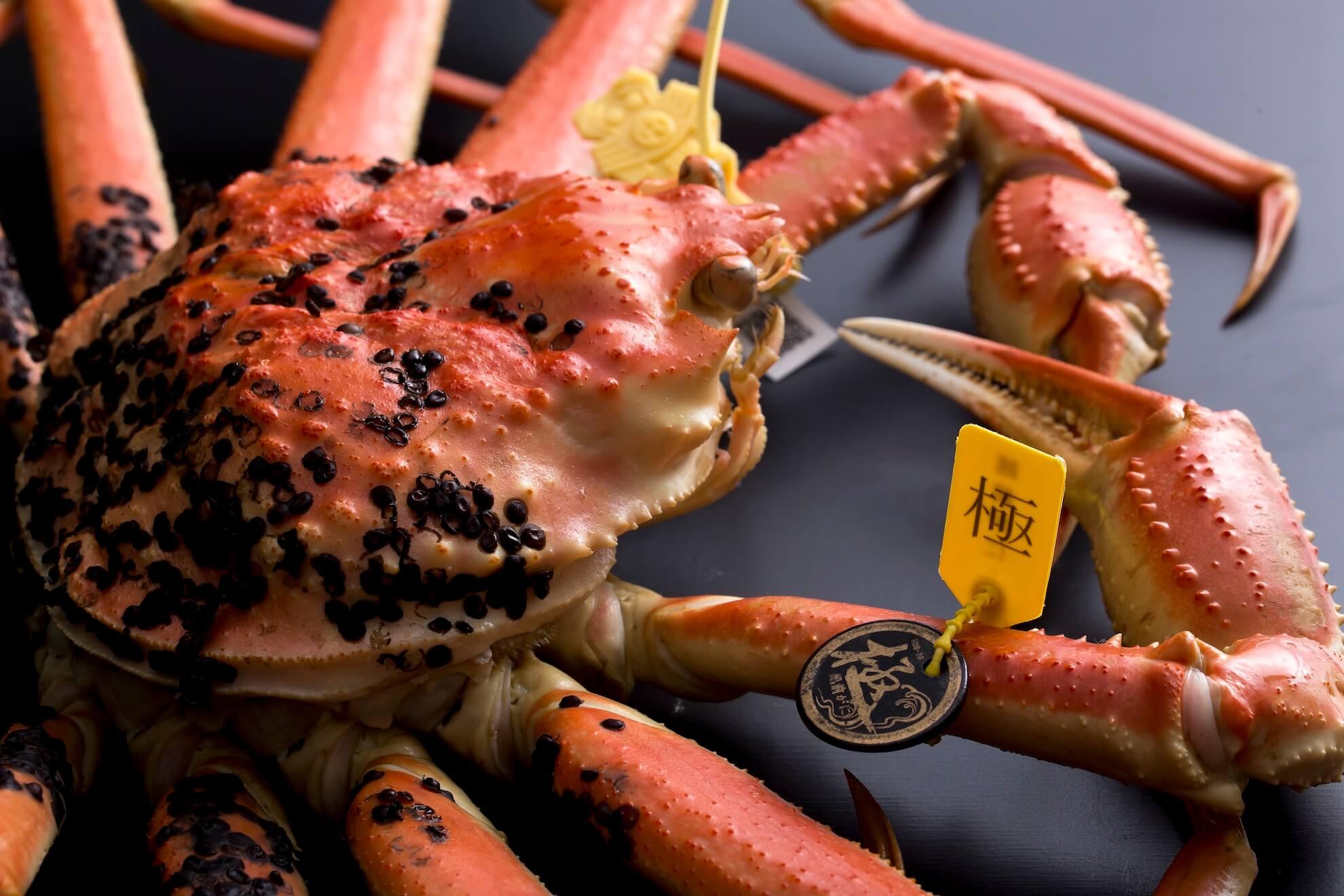 本サイトで取扱う蟹と種類