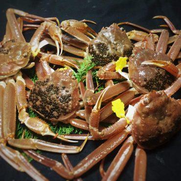 越前ガニの茹蟹Aセット【幻の天然塩:越前塩使用】